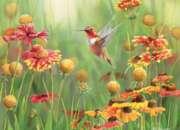 Cobble Hill Jigsaw Puzzles - Rufous Hummingbird