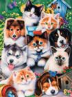 Pet Pals - 300pc Jigsaw Puzzle by Masterpieces