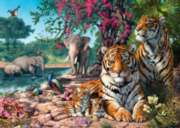 Jigsaw Puzzles - Hidden Images: Tiger Sanctuary