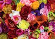Jigsaw Puzzles - You Smell: Roses