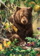 Jigsaw Puzzles - Berry Bear