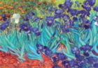 Irises: Van Gogh - 1000 pc Jigsaw Puzzle by D-Toys