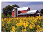 Melissa & Doug Sunflower Farm Jigsaw Puzzle