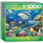 Swimming with Sharks by Howard Robinson (Small Box) - 1000pc Jigsaw Puzzle by Eurographics
