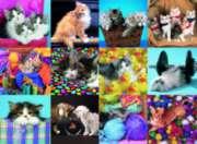 Ravensburger Kitten Collage Jigsaw Puzzle