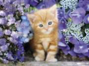Clementoni Ginger Cat in Flowers Jigsaw Puzzle
