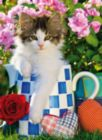 Tabby Kitten - 1000 pc Jigsaw Puzzle by Clementoni