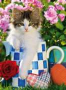 Clementoni Tabby Kitten Jigsaw Puzzle