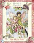 Apple Blossom Fairies - 300pc Jigsaw Puzzle by New York Puzzle Company