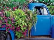 Ceaco Flora Blue Pick Up Jigsaw Puzzle