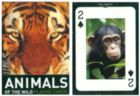 Animals of the Wild - Playing Cards