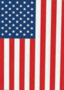 USA Flag - Garden Flag by Toland