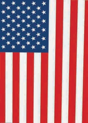 USA Flag - Standard Flag by Toland