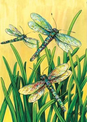 Dragonflies in Flight - Standard Flag by Toland
