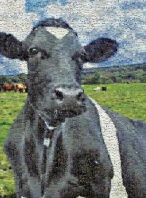 Photomosaic Jigsaw Puzzles - Cow