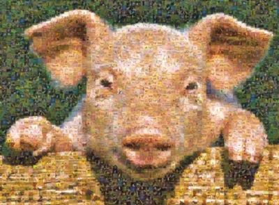 Photomosaic Jigsaw Puzzles - Pig