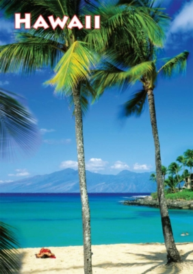 Large Format Jigsaw Puzzles - Hawaii
