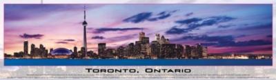 Toronto - 750pc Panoramic Jigsaw Puzzle by Buffalo Games