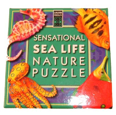 Sensational Sea Life - Pattern Matching Puzzle