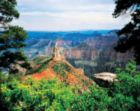 Grand Canyon North Rim - 500pc Jigsaw Puzzle by Masterpieces