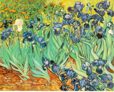 Van Gogh: Irises - 1000pc Jigsaw Puzzle by Piatnik