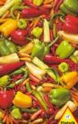 Peppers & Chilis - 1000pc Jigsaw Puzzle by Piatnik