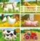 Farm - 6pc Block Children's Puzzle by Ravensburger