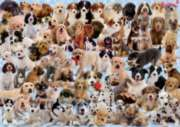 Dogs Galore! - 1000pc Jigsaw Puzzle by Ravensburger