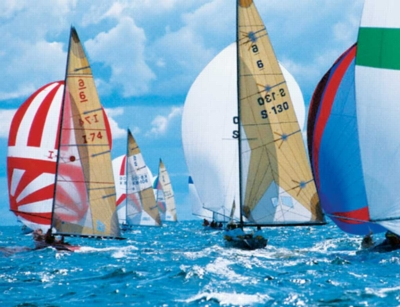 Sailboats - 500pc Jigsaw Puzzle by Springbok