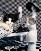 Checkerboard Cat - 1000pc Jigsaw Puzzle by Springbok