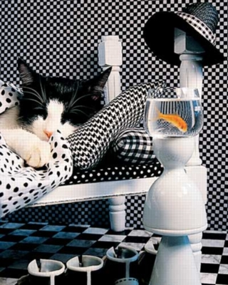 Springbok Jigsaw Puzzles - Checkerboard Cat