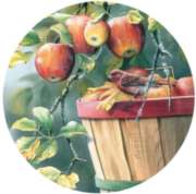 Apple Harvest - 300pc Large Format Round Jigsaw Puzzle by Serendipity