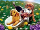 Summer Frolics - 550pc Jigsaw Puzzle by Serendipity