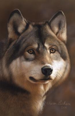 Serendipity Jigsaw Puzzles - Timberwolf