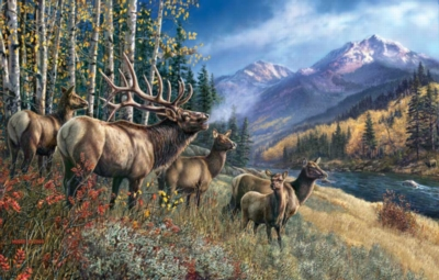 Elk Anthem - 1000pc Jigsaw Puzzle by Sunsout
