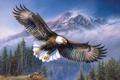 Eagle Anthem - 1000pc Jigsaw Puzzle by Sunsout