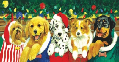 Stocking Puppies - 500pc Panoramic Jigsaw Puzzle by Sunsout