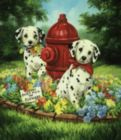 Please Don't Pick the Flowers - 200pc Jigsaw Puzzle by Sunsout