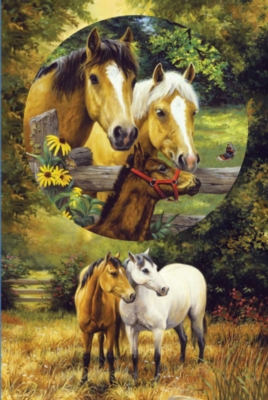 Country Horses - 625pc Family Style Jigsaw Puzzle by Sunsout