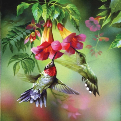 Summer Hummer - 1000pc Sunsout Jigsaw Puzzle
