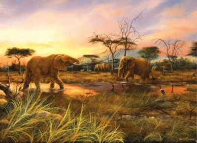 Jigsaw Puzzles - Elephants At The Watering Hole