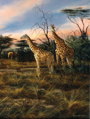 Giraffes At The Watering Hole - 500pc Sunsout Jigsaw Puzzle