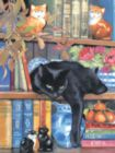 On the Shelf - 1000pc Jigsaw Puzzle by Sunsout