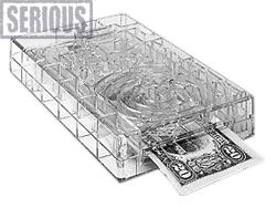Bilz Obstacle - Money Puzzle
