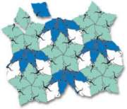 Puzzellations: Squids & Rays - 252pc Tessellation Classroom Pack