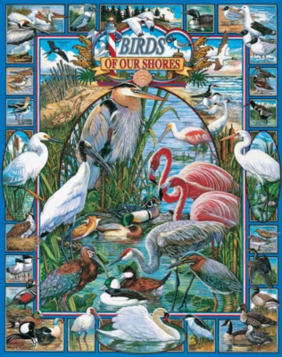 Birds of our Shores - 1000pc Jigsaw Puzzle By White Mountain