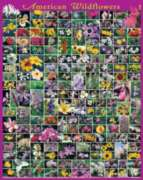 American Wildflowers  - 1000pc Jigsaw Puzzle By White Mountain