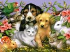 Lovable Pets - 550pc Jigsaw Puzzle by White Mountain