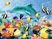 Something Fishy - 550pc Jigsaw Puzzle by White Mountain