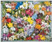 Orchids - 1000pc Jigsaw Puzzle By White Mountain